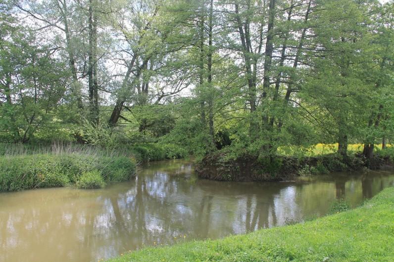 Location de vacances - Maison - Villa à Cercy-la-Tour - Rivière