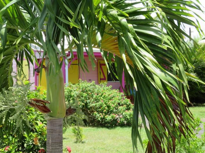Location de vacances - Gîte à Le Moule - Gite vue du Jardin