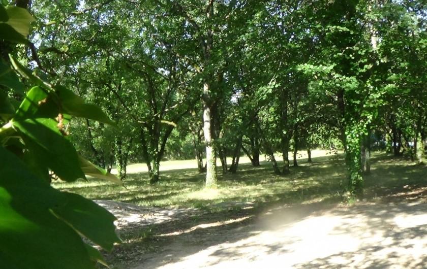 Location de vacances - Chambre d'hôtes à Cremps - bois de chenes ancienne truffière