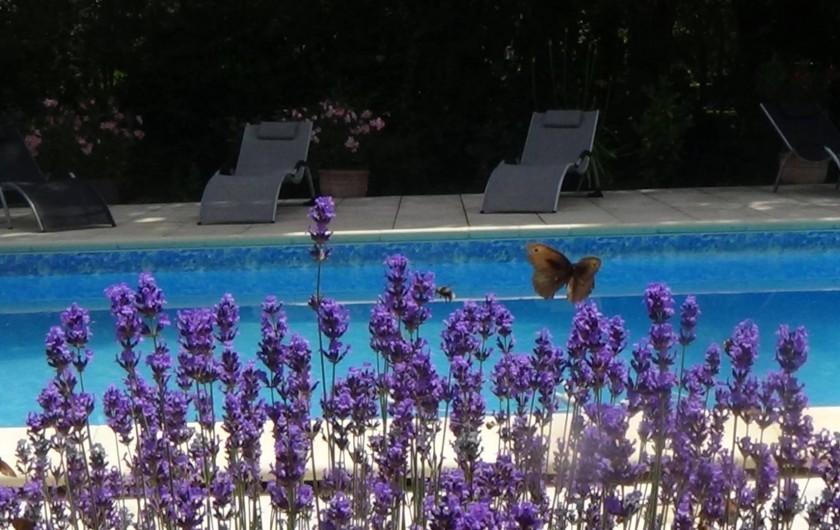 Location de vacances - Chambre d'hôtes à Cremps - piscine