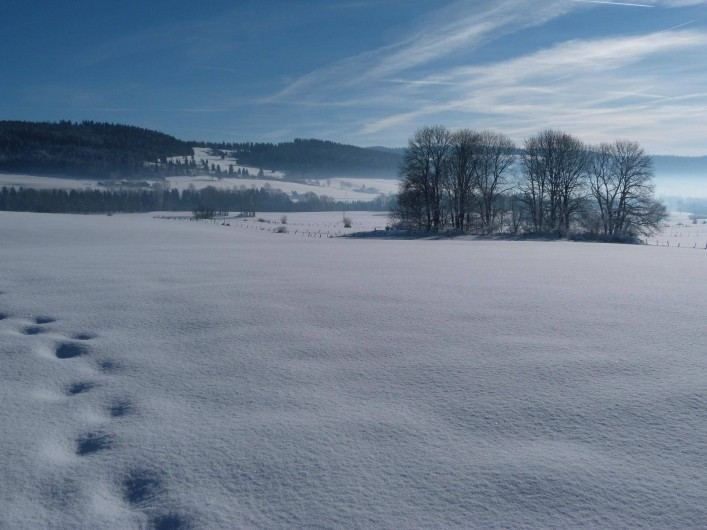 Location de vacances - Gîte à Les Fins - la neige
