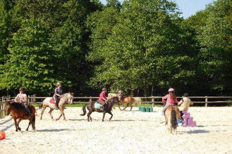 Location de vacances - Gîte à Anor - Animation poneys sur place