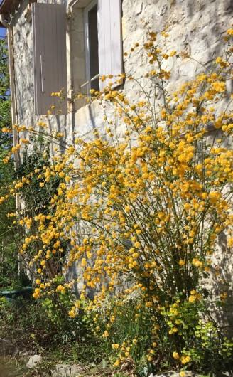Location de vacances - Gîte à Lendou-en-Quercy - coté escalier sud ouest