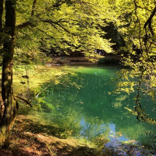 Location de vacances - Gîte à Lendou-en-Quercy - La rivière tout prés