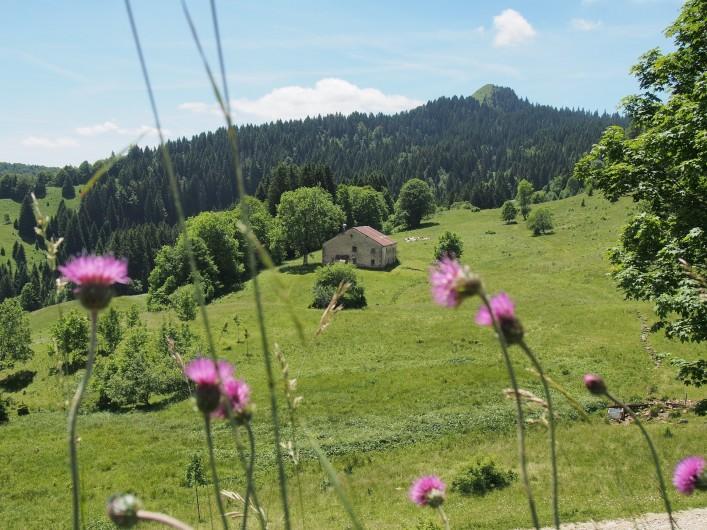 Location de vacances - Chalet à La Pesse - Le Crêt de Chalam vu depuis  La borne au Lion