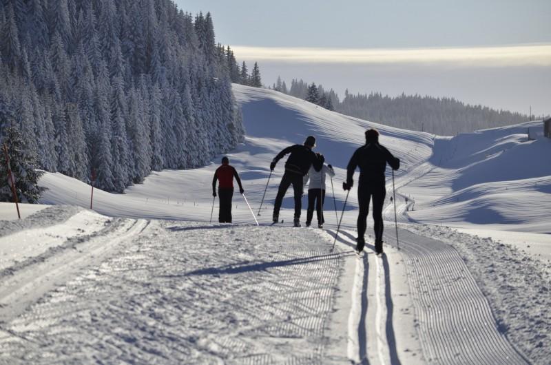 Location de vacances - Chalet à La Pesse - Ski de fond
