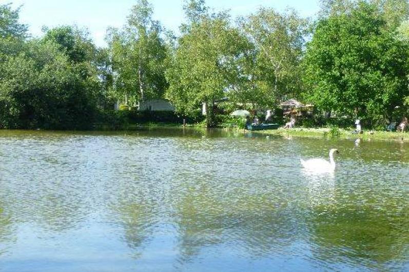 Mobil home dans camping avec piscine rang du fliers - Chambre d hote avec piscine nord pas de calais ...