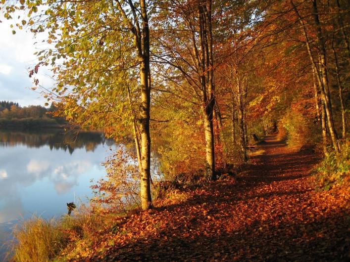 Location de vacances - Chalet à Bonlieu - Lac de Bonlieu