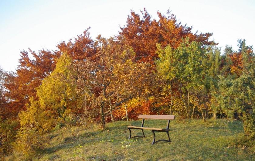 Location de vacances - Chalet à Bonlieu - Point de vue détente du terrain