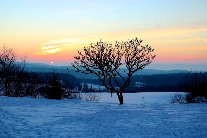 Location de vacances - Chalet à Bonlieu - Vue depuis la terrasse du Chalet