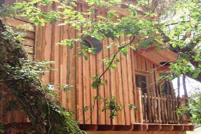 Location de vacances - Cabane dans les arbres à Messanges
