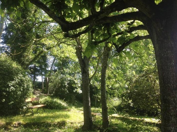 Location de vacances - Gîte à Saint-Georges-sur-Baulche - Banc, jardin