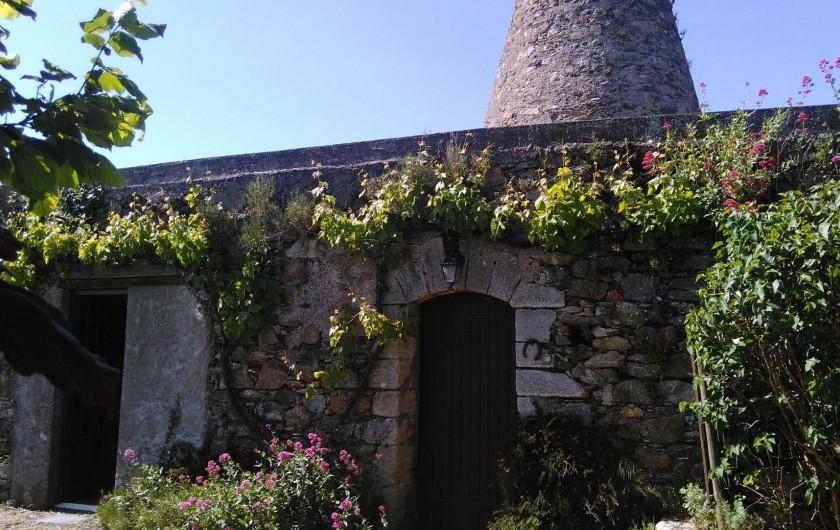 Location de vacances - Maison - Villa à Beaulieu-sur-Layon - Le moulin