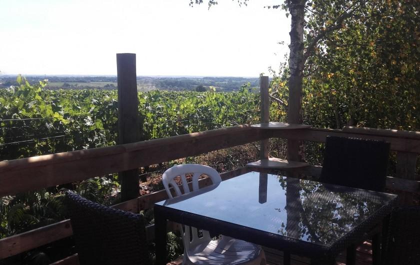Location de vacances - Maison - Villa à Beaulieu-sur-Layon - Vue sur la vallée du Layon