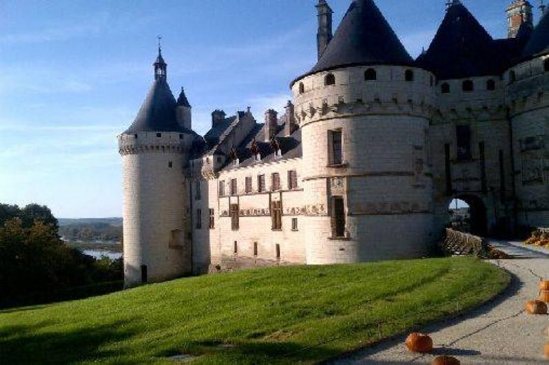 Location de vacances - Gîte à Saint-Georges-sur-Cher