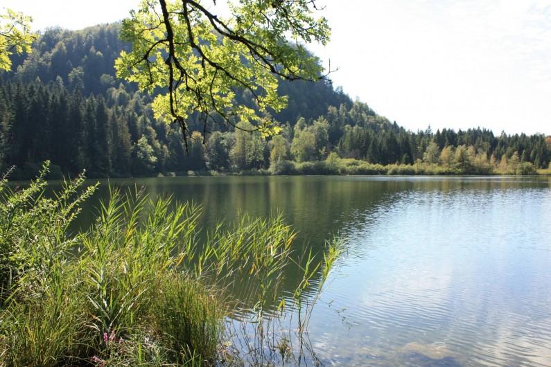 Location de vacances - Appartement à Chaux-des-Prés - le lac de Bonlieu.