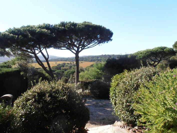 Location de vacances - Chambre d'hôtes à Ramatuelle - Vue Jardin et vignes