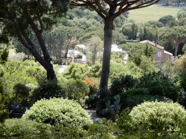 Location de vacances - Chambre d'hôtes à Ramatuelle - Jardin