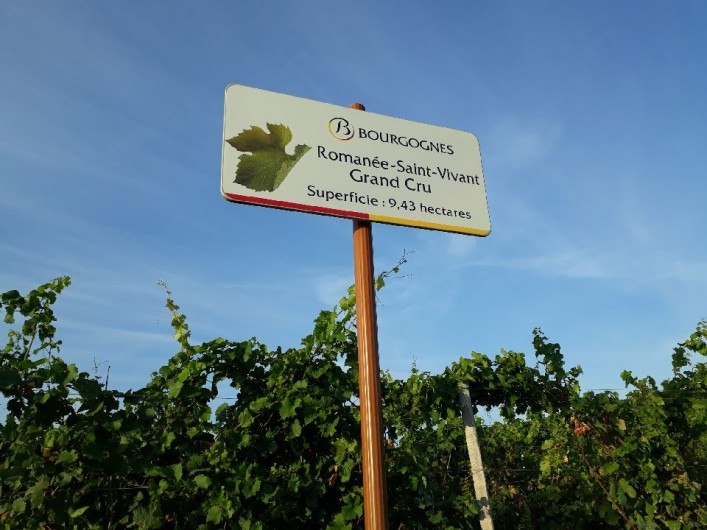 Location de vacances - Villa à Vosne-Romanée - Vignoble de Vosne domaine de la Romanée-Conti