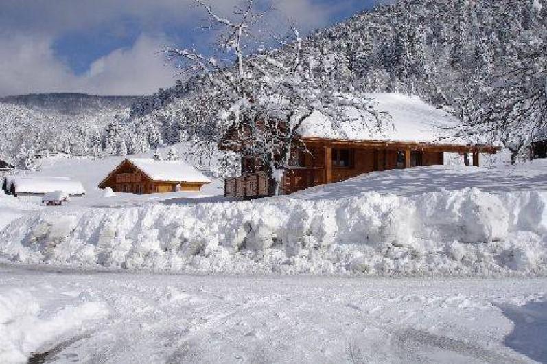 Location de vacances - Chalet à La Bresse