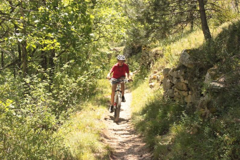 Location de vacances - Chalet à Blavignac - De belles randonnées , à pied, à VTT, à cheval...