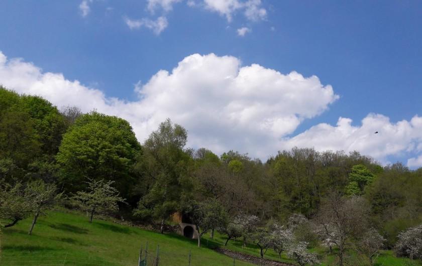Location de vacances - Maison - Villa à Munster - Vue arrière