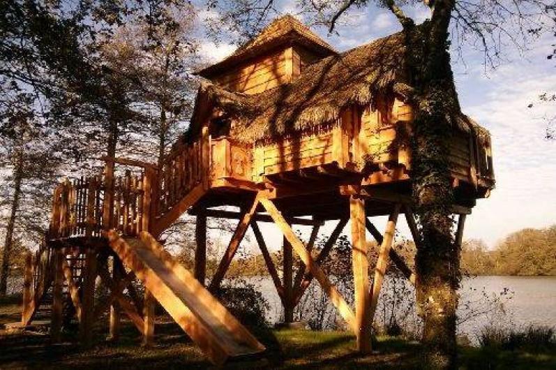 Location de vacances - Cabane dans les arbres à Saint-Paul-de-Varax
