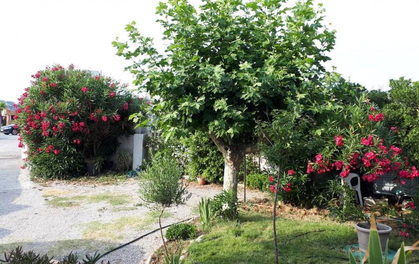Location de vacances - Appartement à Sainte-Maxime - jardin