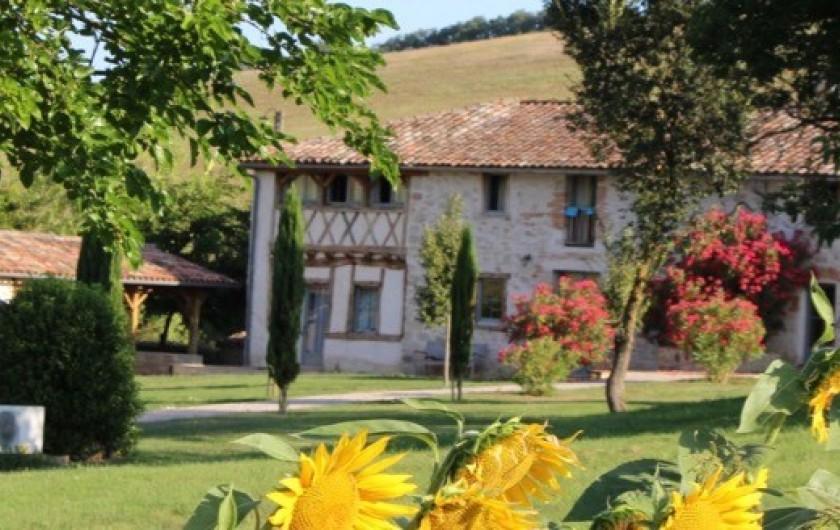 Location de vacances - Maison - Villa à Marzens - la maison entre tournesol et laurier