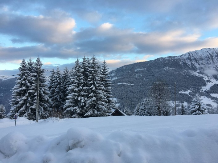Location de vacances - Chalet à Les Avanchers-Valmorel - vu de la terrasse du chalet