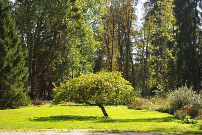 Location de vacances - Château - Manoir à Bussy-la-Pesle - Le parc et la rivière