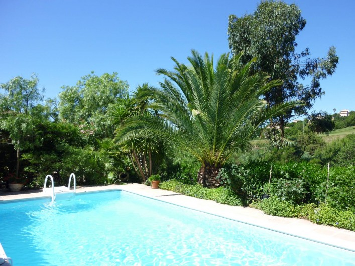 Location de vacances - Appartement à Sainte-Maxime
