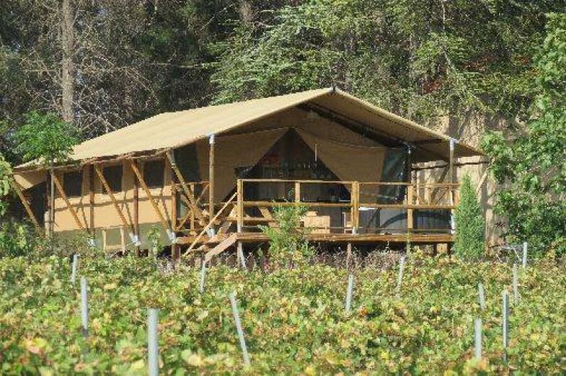 Location de vacances - Insolite à Laure-Minervois