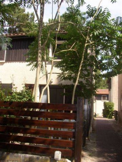 Location de vacances - Maison - Villa à Lacanau Océan