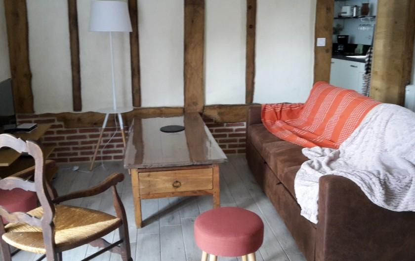 Location de vacances - Gîte à Bosville - pièce de vie avec TV, poêle pellet, accès wifi