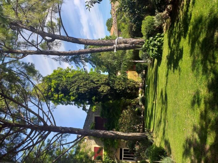 Location de vacances - Gîte à Roujan - Jardin de la propriété.
