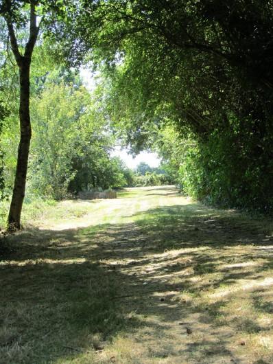Location de vacances - Gîte à Saint-Crepin - Vue sur le chemin d'entrée