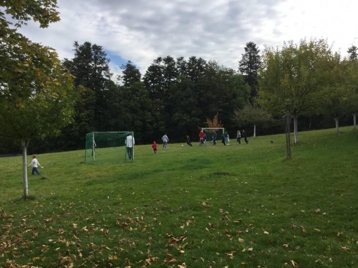 Location de vacances - Chalet à Sainte-Marie-aux-Mines - terrain de foot,  pré de jeux