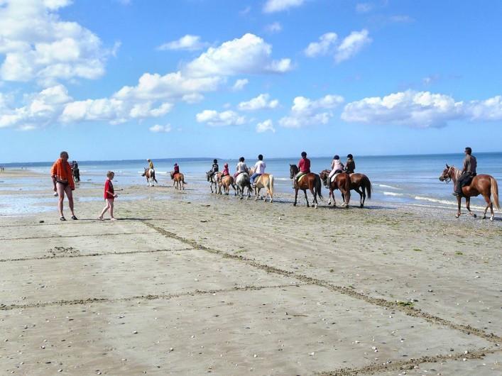 Location de vacances - Bungalow - Mobilhome à Ravenoville Plage - Balade à cheval sur la plage.