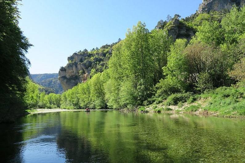 Location de vacances - Gîte à La Malène - La rivière a 50 mètres du gite.