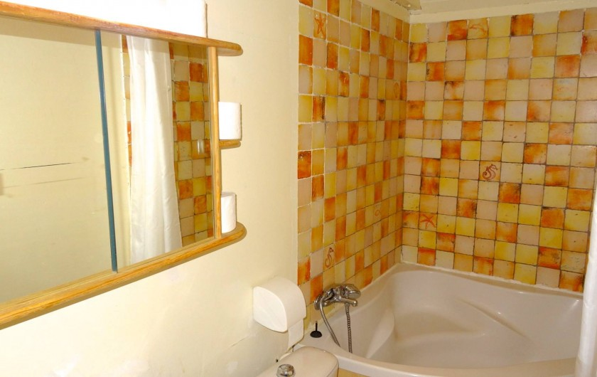 Location de vacances - Gîte à Le Pont-de-Montvert - salle de bains
