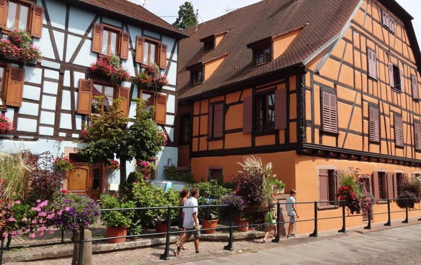 Location de vacances - Gîte à Ribeauville - Découverte à pied, à vélo ou en voiture de Ribeauvillé