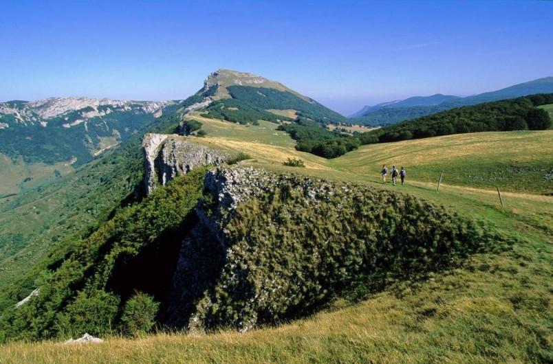 Location de vacances - Gîte à Plan-de-Baix - Le plateau d'Ambel