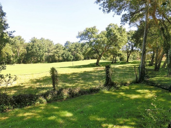 Location de vacances - Villa à Moliets-et-Maa - Vue du cottage