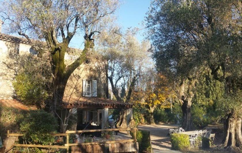 Location de vacances - Mas à Grasse - Mas provençal du 18° rénové.