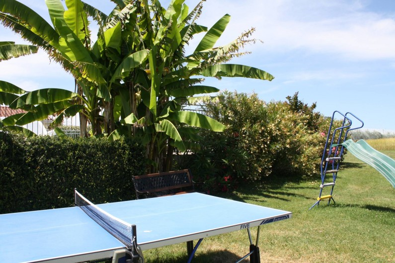 Location de vacances - Gîte à Lafrançaise - Tennis de table.