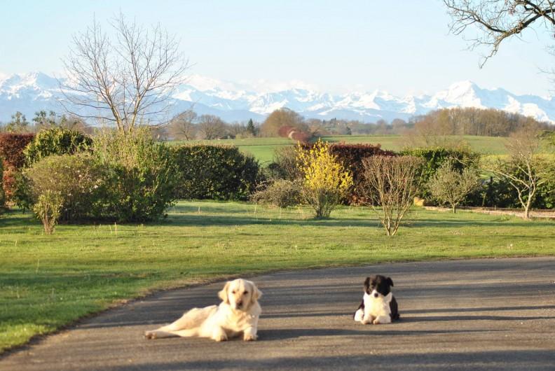 Location de vacances - Gîte à Duffort - Vue depuis la terrasse vers la pelouse