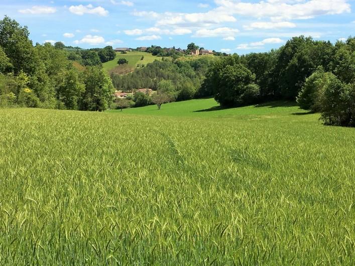 Location de vacances - Chambre d'hôtes à Auriac-du-Périgord - Le terrain