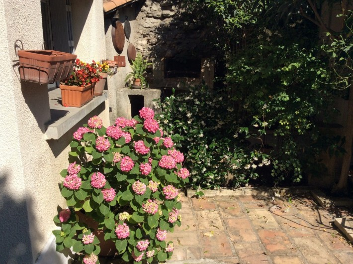 Location de vacances - Appartement à Nîmes - jardin