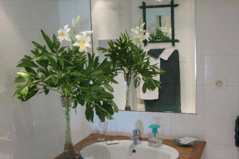 Location de vacances - Chambre d'hôtes à Velluire - Salle d'eau chambre Marais